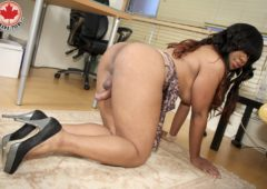 Asia Hilton in  Canadatgirl Sexually Luscious Asia Hilton June 19, 2015  Transsexual