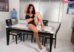 Kimmie Bombshell in  Tgirlsxxx Gorgeous Kimmie Bombshell! September 17, 2018  Transsexual