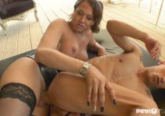 Dafne in  Pinkotgirls The maid with a big cock between the legs Transsexual