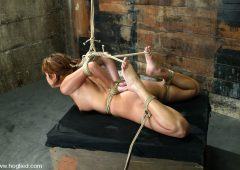 Sativa Rose in  Hogtied Sativa Rose October 11, 2005  Corporal Punishment, Domination
