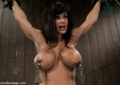 Lisa Ann in  Devicebondage Lisa AnnShe played Sarah Palin for porn, lets just see how rogue she really is. October 20, 2009  Metal Bondage, Submission