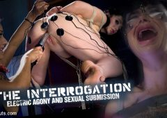 Daisy Ducati in  Electrosluts The Interrogation: Electric Agony and Sexual Submission June 11, 2015  Electrical Play, Taser