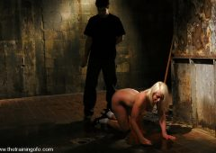 Lorelei Lee in  Thetrainingofo The Training of Lorelei Lee, Day One June 18, 2007  Corporal Punishment, Rope Bondage