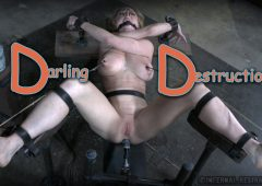 Dee Williams in  Infernalrestraints Darling Destruction March 20, 2015  Nipple Clamps, Cage